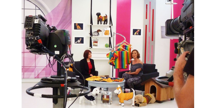 Dog French Touch sur M6 Boutique