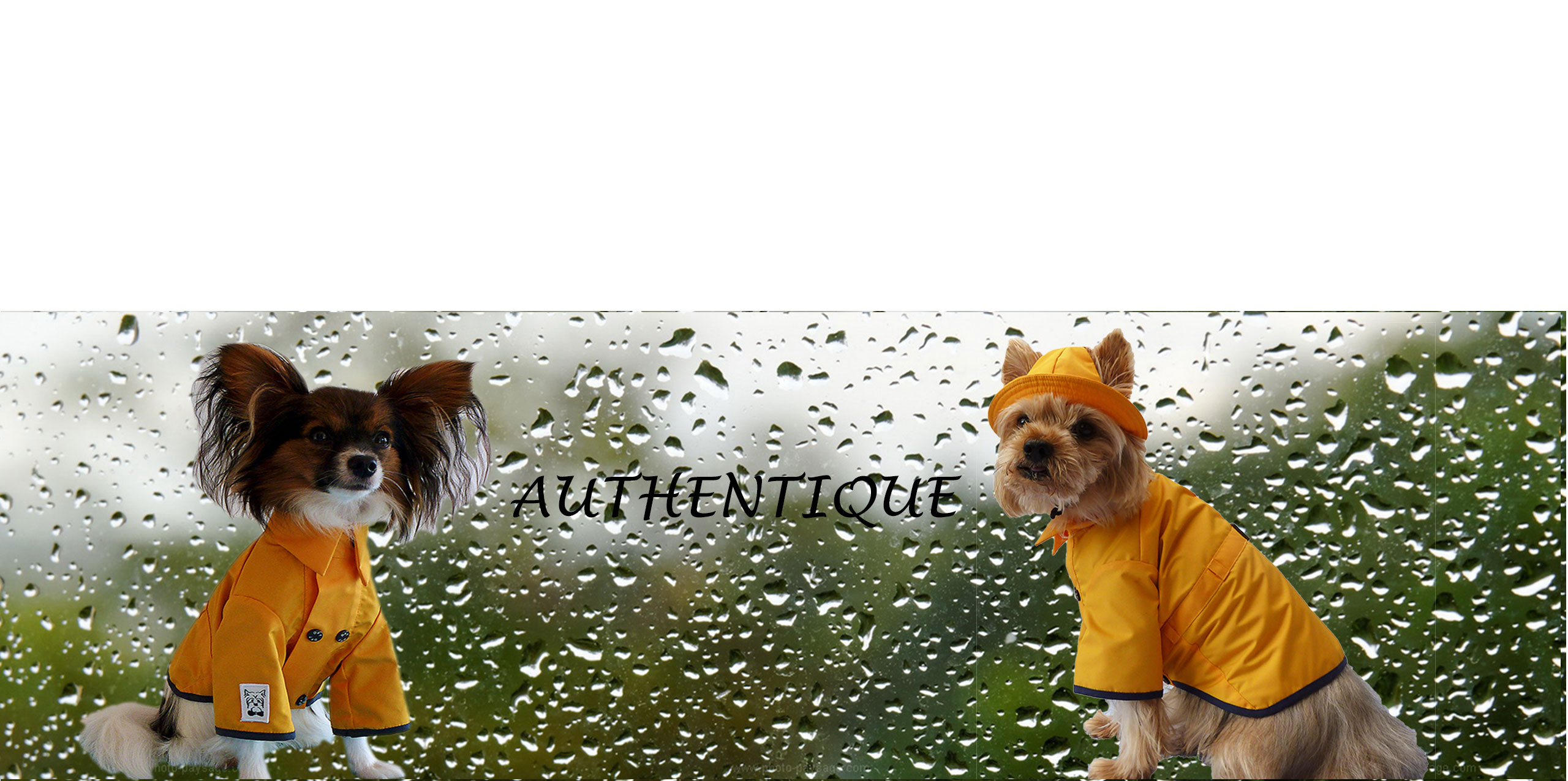 Dog-French-Touch-Raincoats